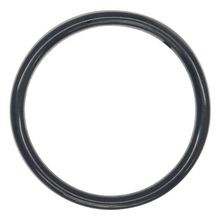 Anel de Vedação o-Ring Wilden PTFE FKM Encapsulado